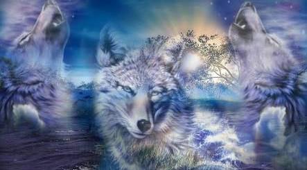 Lone Wolf Harmony